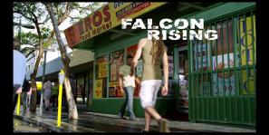 falcon r